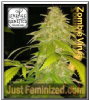 Lineage Zombie Virus Female 3 Cannabis Seeds